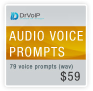 audio voice prompts